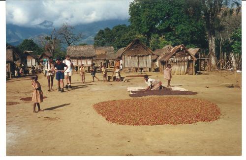 Scène quotidienne dans un village malgache d'aujourd'hui