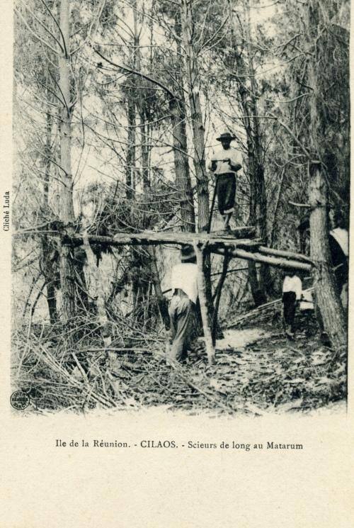 Cilaos - Scieurs de long au Matarum