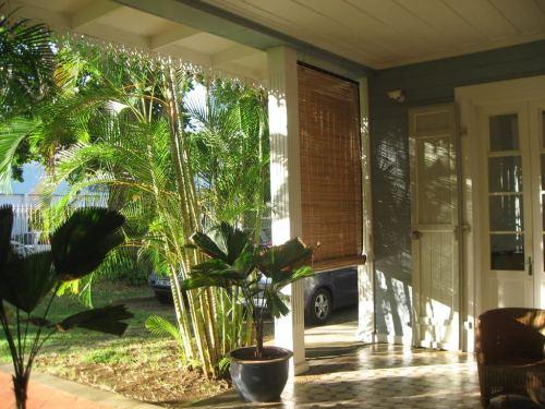 La végétation filtre le soleil entrant sous la varangue du CAUE.