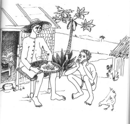 La maison? Non, la kaz kréol ! Illustration de Mme Geneviève Koenig.
