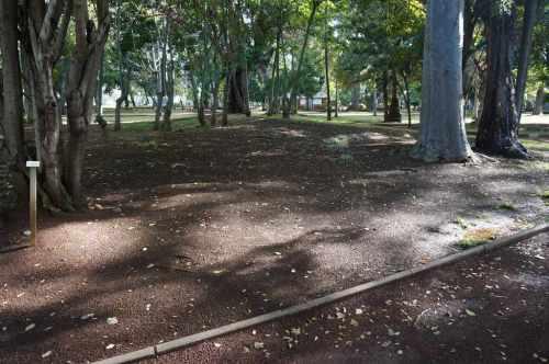 L'État actuel du Jardin : ici tout fut calme et beauté !…